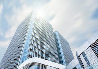 Top 10 największych firm MLM na świecie