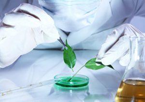 TOP 14 ekologicznych firm MLM