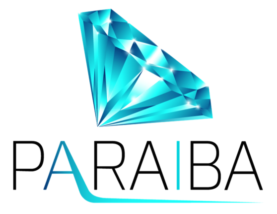 PARAIBA.WORLD LOGO